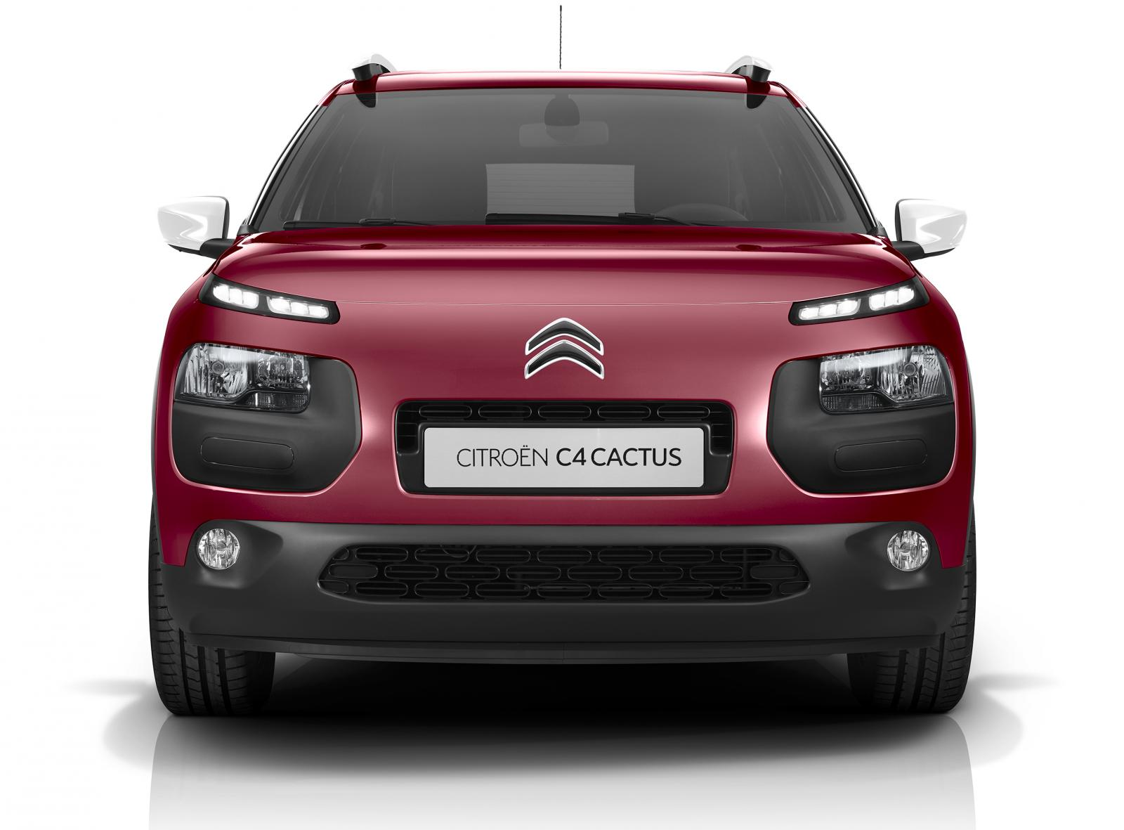 C4 Cactus Feel 2016 Jelly Red